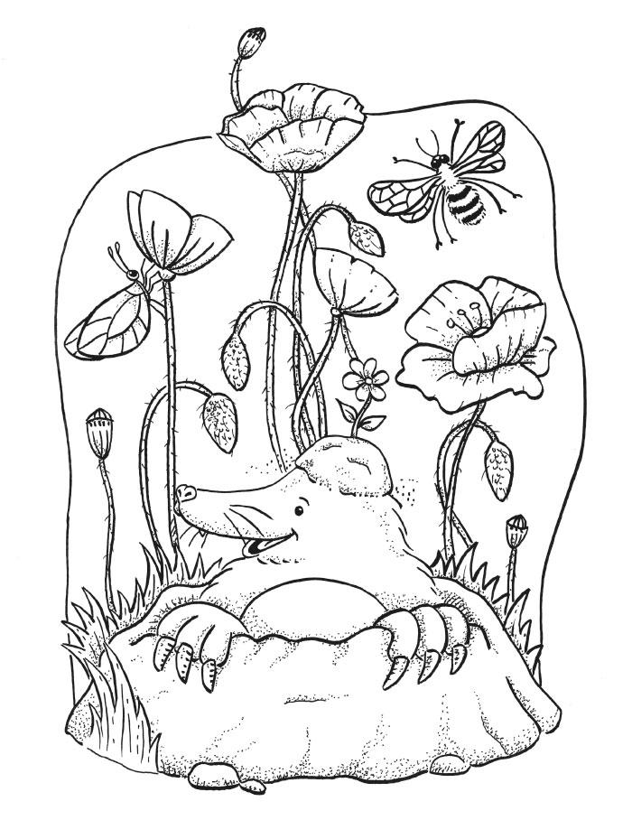03-malebog-sia-og-den-magiske-sten-bog